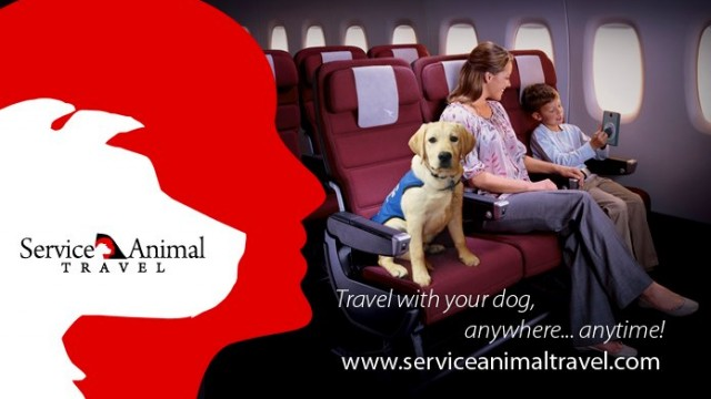 Travel Companion   Bring Your Pet Along With Service Animal Travel
