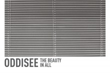 Listen | Oddisee :: The Beauty In All/Tangible Dream [LP Stream]